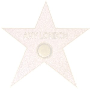 novelty hollywood walk of fame star with personalized name on it